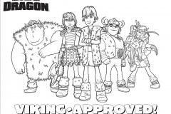 viking_group